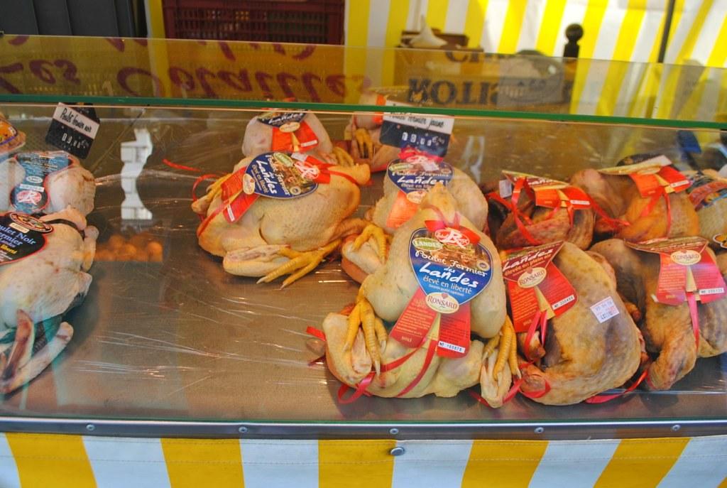Chicken by Lauren Kaplan