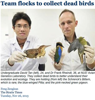 Team flocks to collect dead birds for research