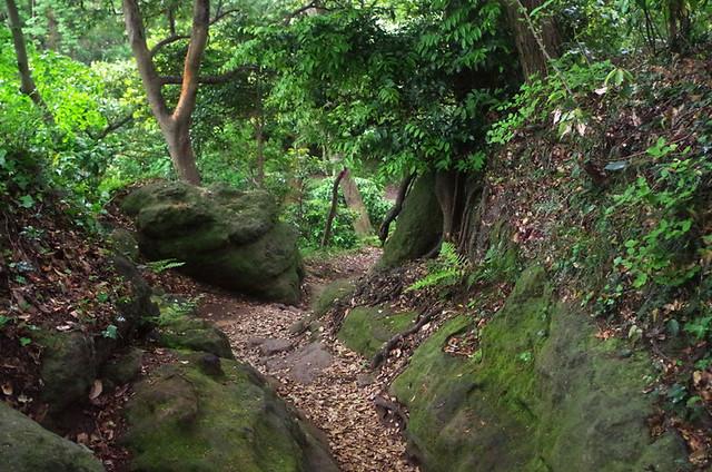 toomilog-tengoku_Hiking_trail021
