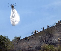 LAFD and Allied Agencies Quickly Tame Tujunga Wildfire