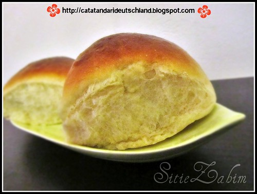 hokkaido milky bun