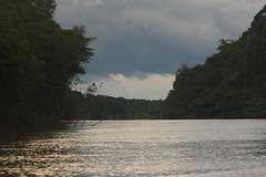 Guyana-0049