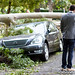 2011.12.01-WindStormDestruction-Pasadena-061.jpg by sirclicks