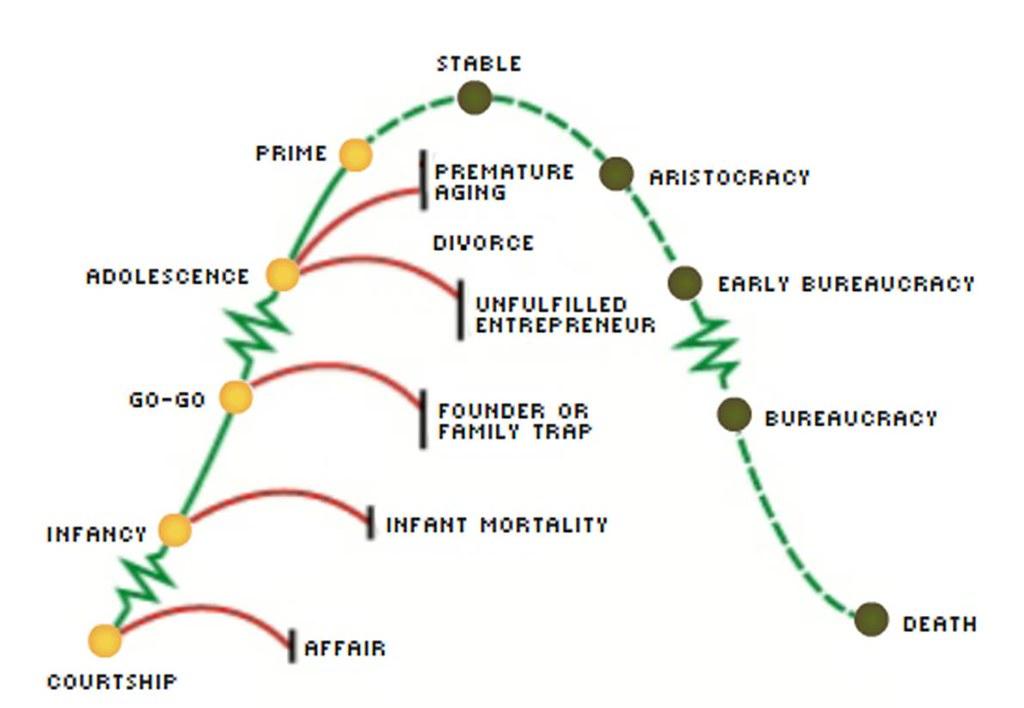 Cykl życia organizacja, zgodnie z metodologią Adizes