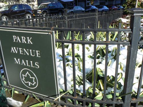 park avenue mall.jpg