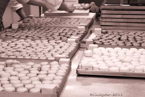 sistemando lesc macarons