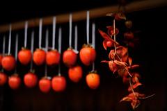 [フリー画像素材] 物・モノ, 食べ物, 果物・フルーツ, 柿・カキ ID:201112112200