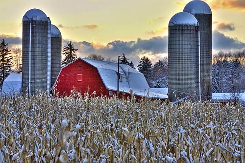 winter sunset sky snow fall barn rural buffalo corn farm silo eastaurora orchardpark