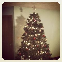 Oh Christmas treeee!