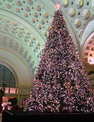 DC's Union Station (by: Meta-Man/Ahmed, creative commons license)