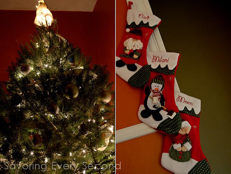 Christmastastic-019-Edit.jpg