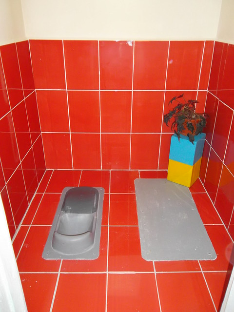 Eco san toilet constructed in school on hasnasenii mari by for Small indian bathroom designs