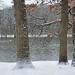 Snow along the Fox River