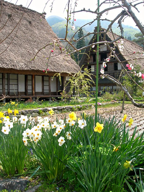 Spring in Shirakawago