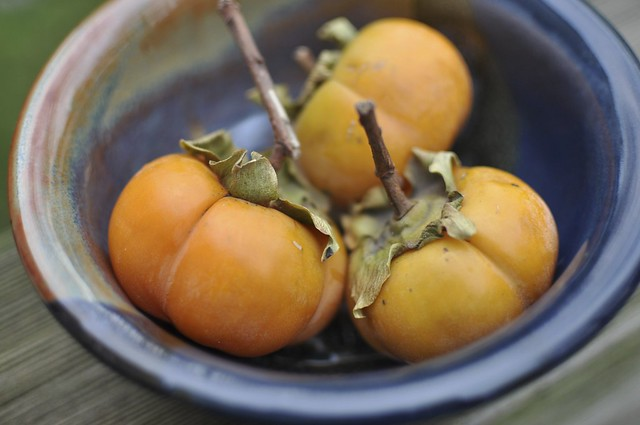 purloined persimmons