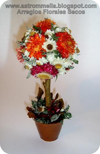 Astrommelia topiario 1 flores secas - Arreglos florales con flores secas ...