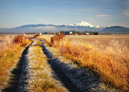 12-22-11 The First Day of Winter by roswellsgirl