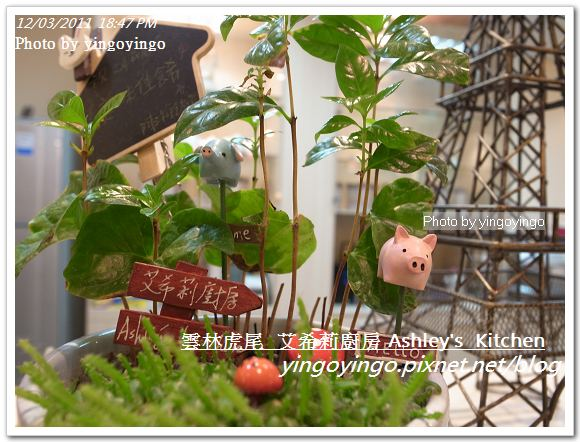 雲林虎尾_艾希莉廚房20111203_R0044336