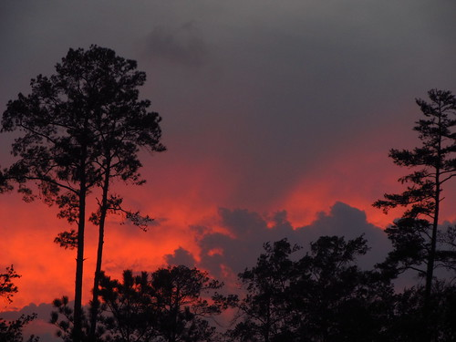 trees sunset clouds fire spring texas