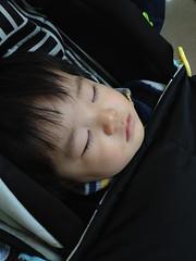 帰りの電車で寝る (2012/1/1)