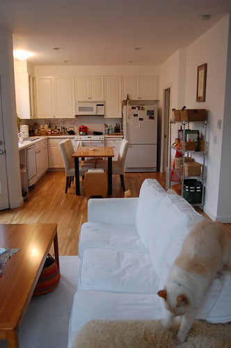 Cozy living/dining/kitchen/kitty