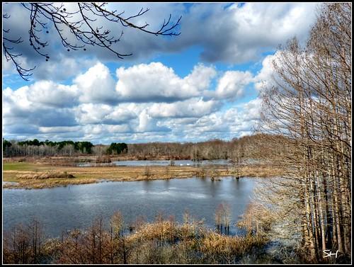 nature water clouds landscape niceshot noxubeerefuge waterscape fantasticnature absolutelyperrrfect bbng