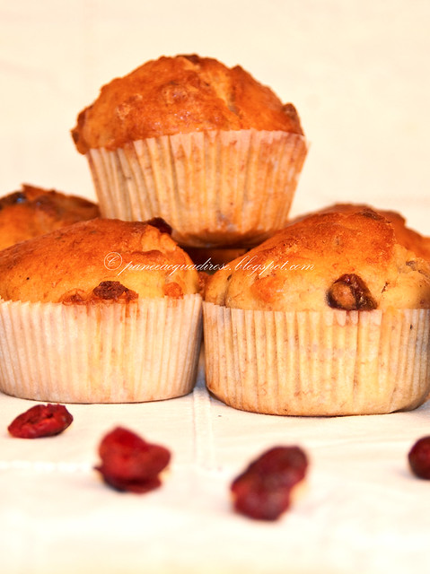 cupcakes ciocco bianco cranberries