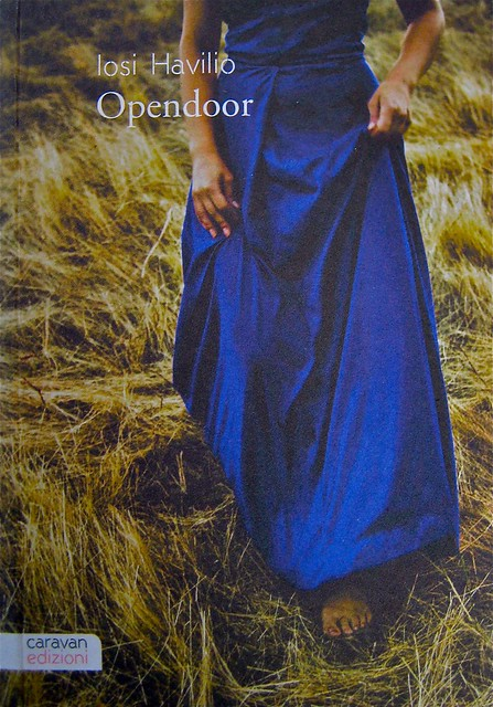 Opendoor, di Iosi Havilio, caravan edizioni 2011; progetto grafico di Flavio Dionisi, ill. di cop. ©DorianGray. copertina (part.), 1
