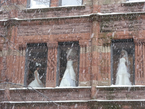 Brides in the Window by susanvg