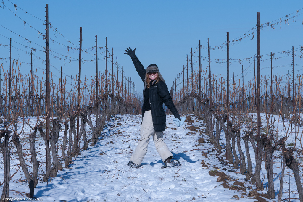 snowshoeing-thirty-bench-winery