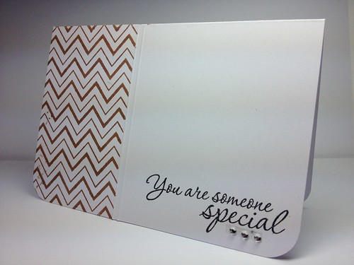 Chevron CAS_someone special