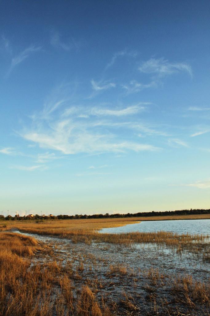 Chapel Trail preserve 17