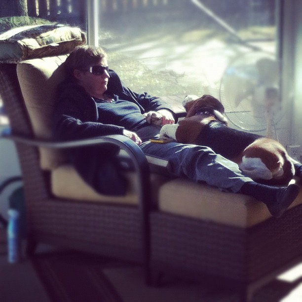 Napping in the sunroom