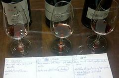 Cata paralela de 3 Pinot Noir