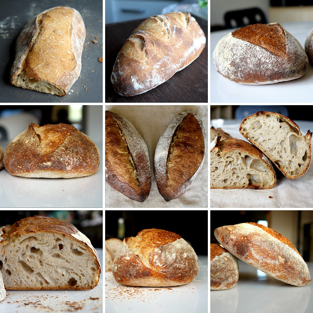 6787582021 5a00e4ced1 z San Joaquin Sourdough   preview