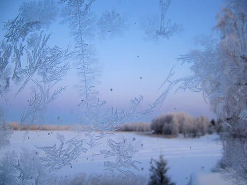 blue winter lake snow cold suomi finland landscape vinter scenery frost february oulu lumi talvi maisema sininen kaldt kuivasjärvi helmikuu kylmä kuura frostroser