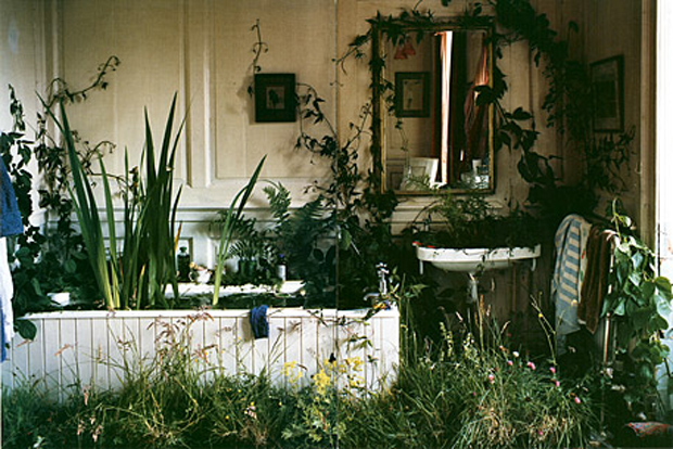 tim walker plants bath