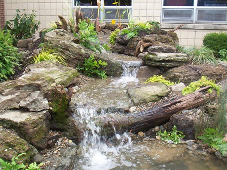 Pond Stream Waterfall Drifwood Moss Rock 1 Flickr