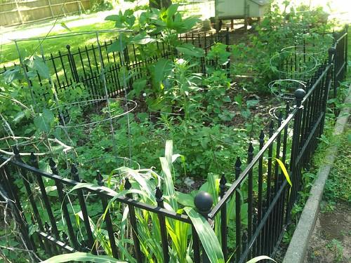 Compost Garden?