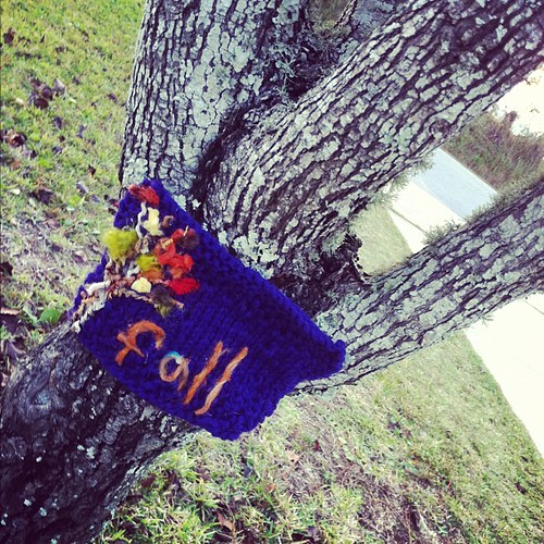 Fall by springknitter
