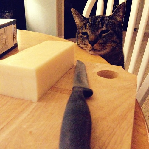 He will steal all your cheese.