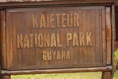 Guyana-0964
