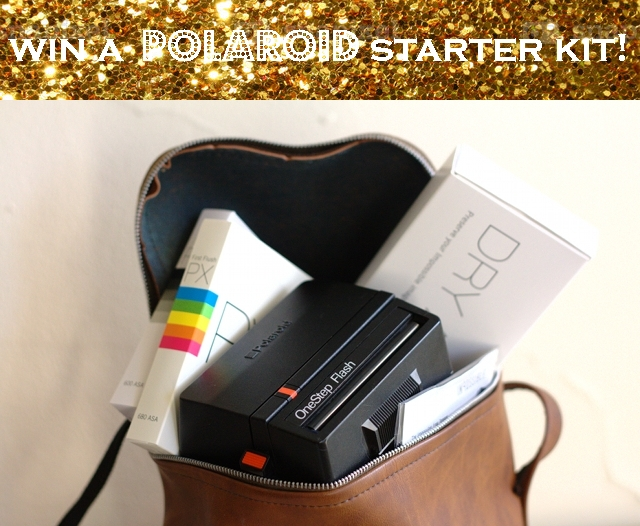 polaroid kit title