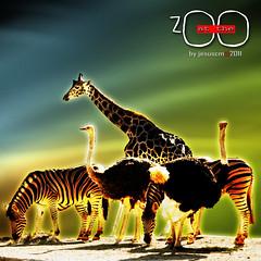 the unreal Zoo