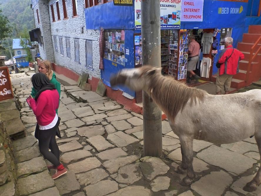 1004_Nepal_112