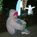zoo_lights_20111119_21929