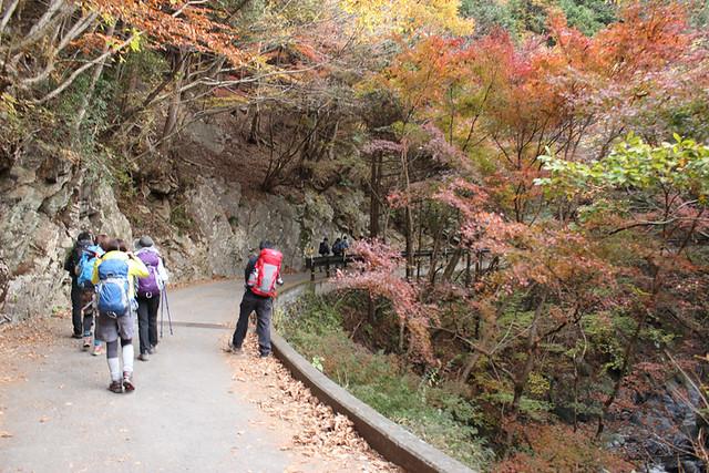 川乗山登山道入口