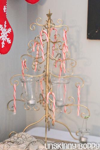 Christmas 2011 from UnskinnyBoppy.com (20 of 20)
