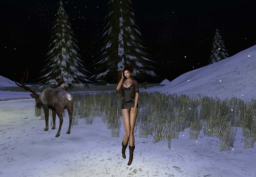 Star Fashion Curiosity, Promo 99 lindens by Cherokeeh Asteria
