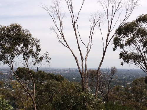 """windy point"" - view over Adelaide"